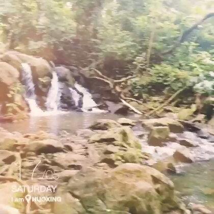 仙踪林 寻宝记 😁😁😁