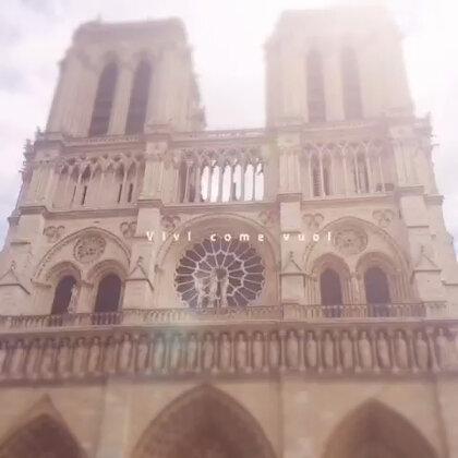巴黎圣母院下全是排队的人啊〜