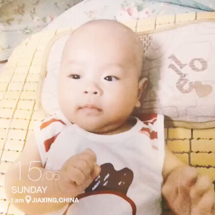 i love you baby 谱子