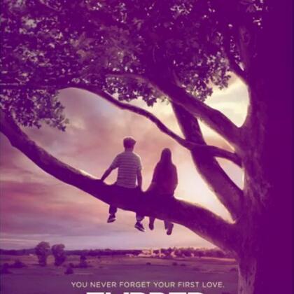 最感人的爱情电影_推荐几部感人的爱情电影