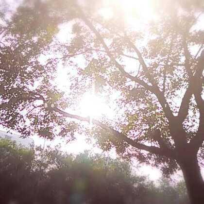 #在路上#秋日阳之光