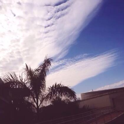 #天空#厦门 • 一片蓝💙谁不爱天空💙只可惜了我没有翅膀