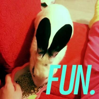 #喂兔子啦#