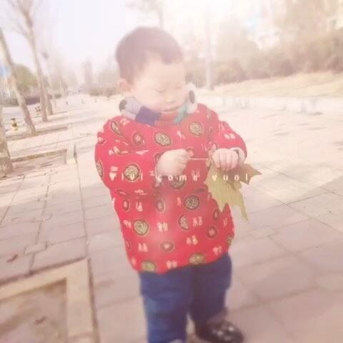 揪树叶的小孩