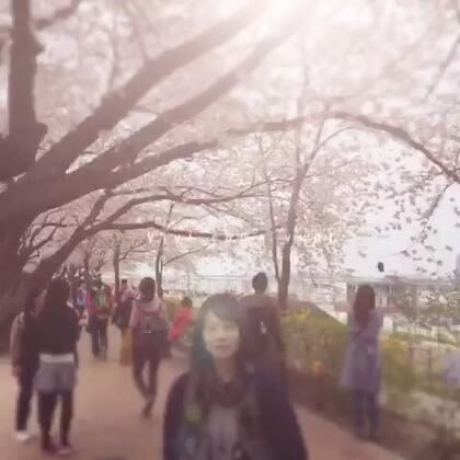 樱花🌸烂漫 #樱花节#