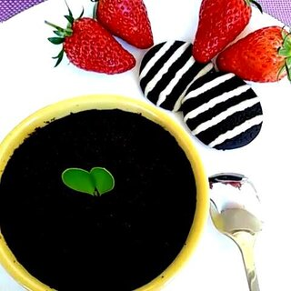 #美食##奥利奥酸奶盆栽##宅在家#享受一人的下午时光💅💅💅🌹🌹🌹