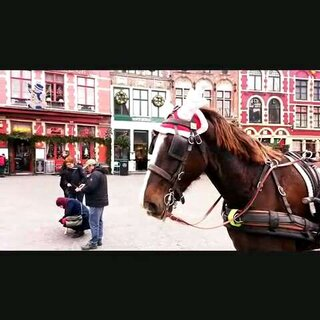 回顧去年聖誕節 🎄 在比利時,殺手沒有假期的 Brugge。#mochatogo##世界那麼大##比利時##布魯日##旅行#