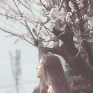 不多说,爱你❤水晶#至善韩流频道#据说长的丑的点不了赞。