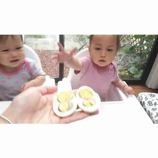 卵蛋图解gent 060