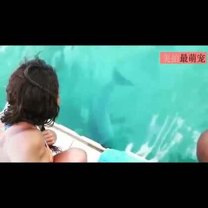 #宠物##涨姿势#镜头下这位网友去巴哈马游玩的时候,她的手机不小心掉落在了水中。但没过多久一只海豚便叼着手机露出了水面,并且交还了手机。真是有爱的一幕😍😍