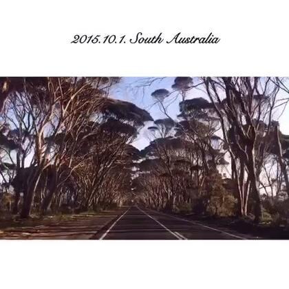#旅行#一直在路上 堪培拉-墨尔本-阿德莱德-袋鼠岛 飞机轮船汽车……来之前本以为南澳就是新州的延续 并没抱太大希望 但南澳的景色却让人惊喜连连!从麦克卡伦谷到袋鼠岛 我一路都在感叹太美啦 每个地方都好想停下来驻足