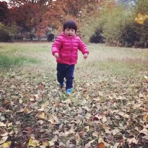 爱树叶的小孩