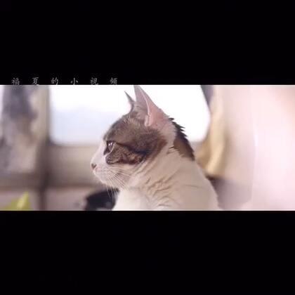 15-12-24 15:10转发的美拍视频