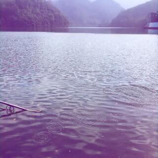 江西赣州·崇义阳岭国家森林公园