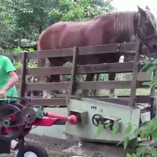 外国牛人发明的马力劈柴机,😱苍了个天呐……这都行😥@美拍小助手 #我要上热门##牛人##请收下我的膝盖#
