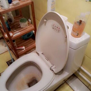 #厕所自嗨#