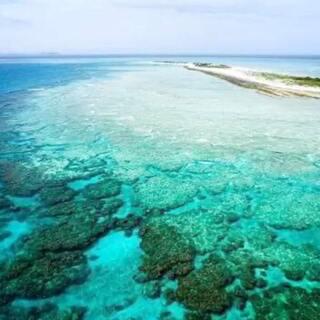#澳大利亚旅行##澳大利亚大堡礁##同程旅游#手机放米里密封了两天,好了!!😬😬这个方法真不错👍👍天气暖和了,大家又想出去走走了吧,同程推出了很多优惠旅游线路,都来我的微店看看吧http://m.ly.com/dujia/sharemstore.html?Mid=9e0068b0bd81b465668c106a278c3cb7&WechatType=0&from=timeline&isappinstalled=0