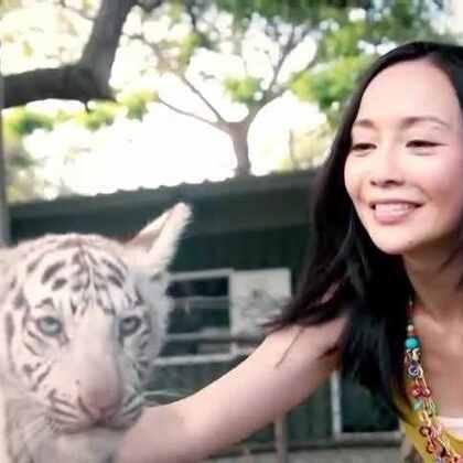 【Joanna's Journey】Episode1-Joanna來到Casela Nature Park實現Wildest Dream,在園區內遇見毛茸茸的原野之心,更踏上被美景環抱的獨木橋,將整片明媚盡收眼底,而當下激動的心跳也將印記在回憶裡,噗通噗通的永遠立體。更多#毛里求斯#都只在每週五#ELLE TRAVEL##Joanna's Journey#!#旅行#