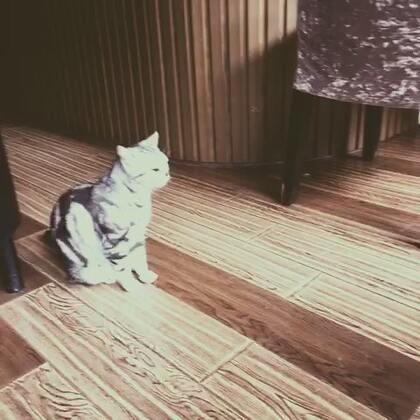 【大👂柒宝美拍】16-03-26 19:10