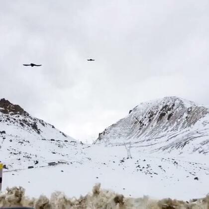 爬雀儿山中! 这是鸟儿都飞不过去的山,海拔4000千多 #随手美拍##旅行##藏区##雀儿山#