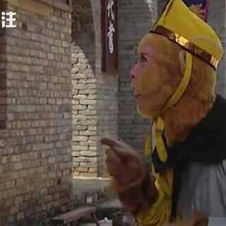 #西游记#搞笑配音视频:孙悟空的#奥斯卡#之梦,就是坚守#老炮儿#的规矩,一路前行,哪怕短暂拥有。#牙牙关注# @美拍小助手