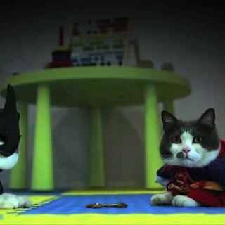 喵蝠侠大战猫人!为了一口小鱼干,友谊的小船说翻就翻!竟要引发一场世纪大战!?(看了十几遍停不下来.....) #喵星人抢不到#