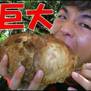 #清纯公介# 海贼王路飞最爱吃的日式漫画肉 微信:kohmydor 微博:kosuke公介 #逗比##搞笑##低卡路里美食# @美拍小助手