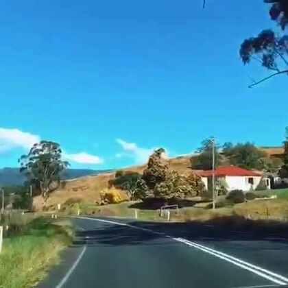 #在路上##随手美拍##旅画映像##澳洲#Canberra To Jervis Bay途经Kangaroo Valley