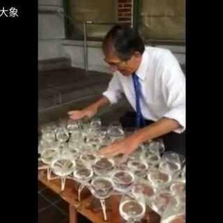 #随手美拍##花式喝水挑战##走哪吃哪##音乐##在路上#中国旅客在欧洲旅行巧遇神奇大叔用水杯打奏中国歌曲民歌兰花草,好神奇啊👏👏👍👍#带着美拍去旅游#