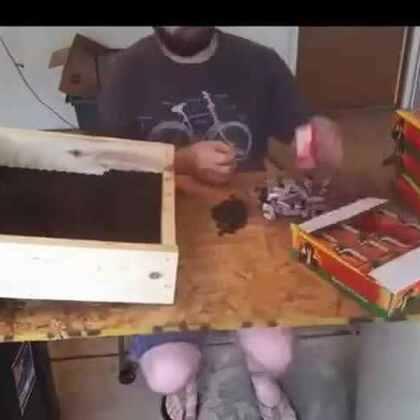 #涨姿势#他在盒子里面装了5200个黑蛇鞭炮,点燃后一栋地狱大厦就出现