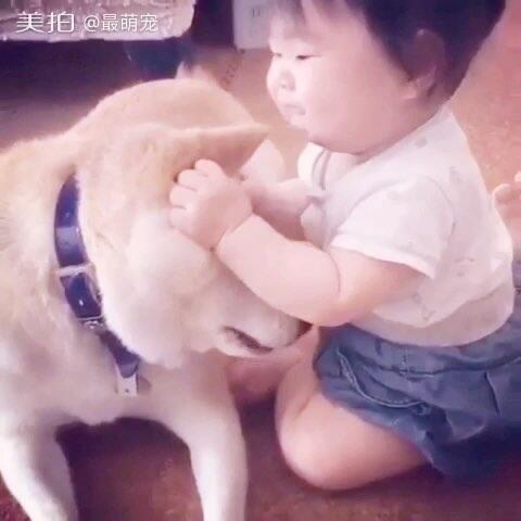 【最萌宠美拍】#宠物#宝宝只是饿了😂