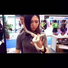 美女与野兽!😍#萌宠##第十九届亚洲宠物展#