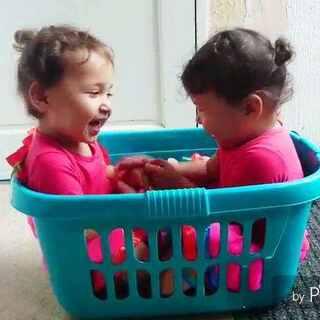 #最萌双胞胎##pallas&themis#