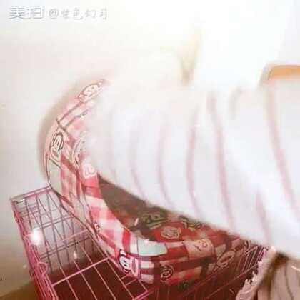 【紫色幻月美拍】16-10-04 14:03