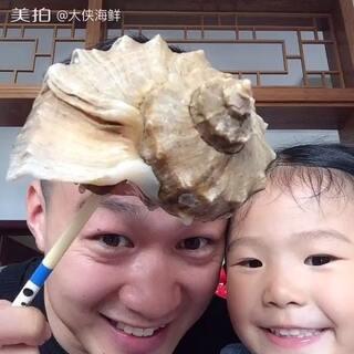 #小吃货##吃货##我是吃货我自豪#一斤一个的大海螺 绝对过瘾呀 海螺壳可以当烟灰缸 点赞过1千 送出10个海螺烟灰缸