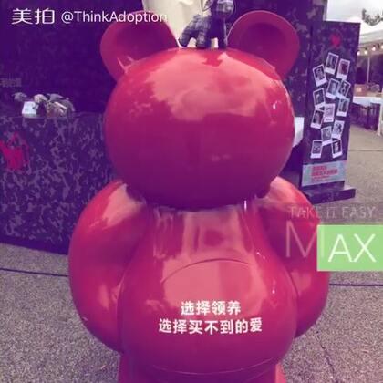 两天的活动终于结束了,感谢JZ Music给予流浪动物这么好的机会。#2016上海爵士音乐节#