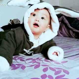 #萌宝宝##搞笑宝宝##萌兔子##宝宝成长记录#我家有只快五个月的兔八哥👄👄👄天天萌化我的心❤❤❤😍😍😍
