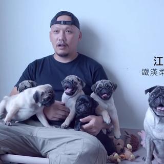 愛動物特輯 | 江民仕 知名攝影師江明仕:牠們是家人,不是寵物,既然決定照顧他們,就是一輩子的事! #ELLE##寵物##愛寵物特輯##平面攝影師#