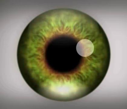 集中注意力盯住中间的字母 99%的人看完视频后都出现幻觉.😃😃😃