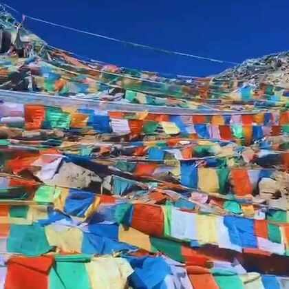 #美拍大师##随手美拍##醉美林芝#特别珍惜能够出来的每一次机会。林芝-鲁朗真的是美的不要不要 希望大家都来西藏这片圣地散心 放空。🌹🌹🌹🌹