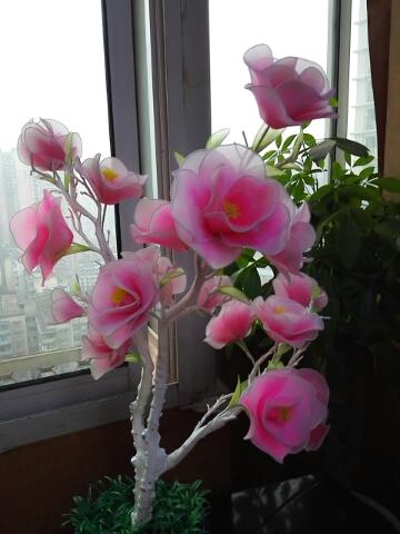 双色丝网玉兰花盆栽制作,需要材料包的进淘宝店铺美昕工艺品店 ttps