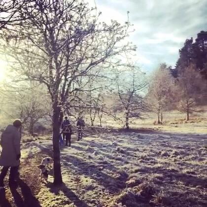 今年妈咪的生日周,在苏格兰北部度过,天冷但景美,安静且心暖。
