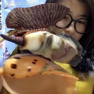 #吃秀##我是吃货我自豪##美拍美食官方频道##美拍助手,我要上热门# 朋友们 你们吃过这种海螺吗 你们都是怎么吃的 你们都喜欢怎么吃呀 可以告诉我点意见哦