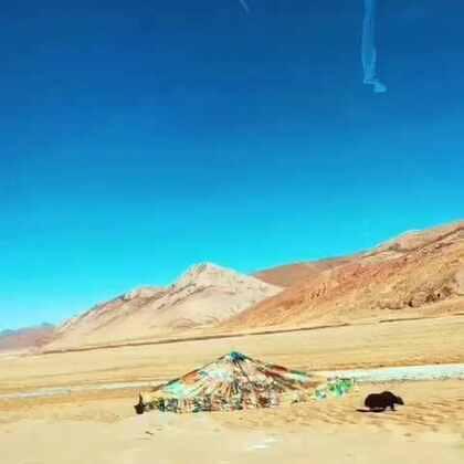 #美拍大师# 上次出差 拍的邦达草原到洛隆县一路的风景。八宿县的录了一天 结果手一贱按错了 视屏也木有了。随手录的 大家不要嫌弃。☺☺☺☺#西藏昌都##大美西藏##我要上热门#