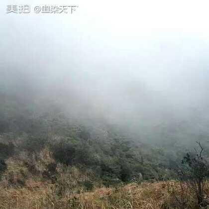 征服深圳第一高峰,我的老腿不是自己的了。