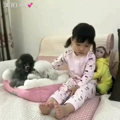 馨就知道安安护着她#宝宝##宠物##家有宠物#@美拍小助手