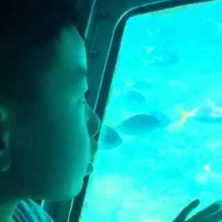 #宝宝#的澳洲回忆----#澳大利亚大堡礁#潜水艇🚤🚤🚤(3岁时的#宝宝#)😄😄😄