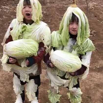 #搞笑##宝宝##我要上热门#白菜小精灵