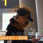 黄子韬机场秒变木头人,一动不动专注玩手机!