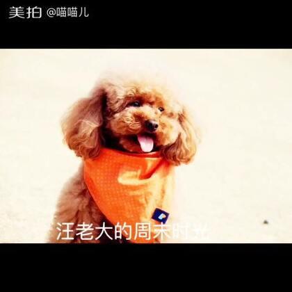 03-26 20:27转发的美拍视频